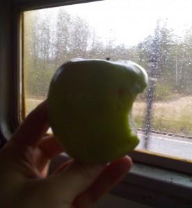 Поехали в лес, дождь начался ещё в пути. Apple.