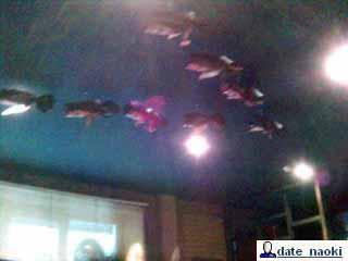 Под потолком - летящие косяком бутылки.